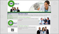Medical Software Consulting
